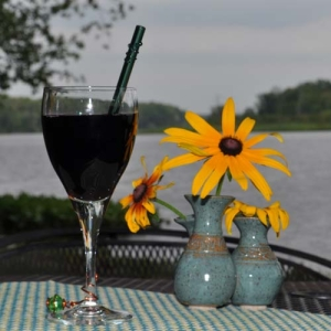 Glass drinking straws in wine glass by lake